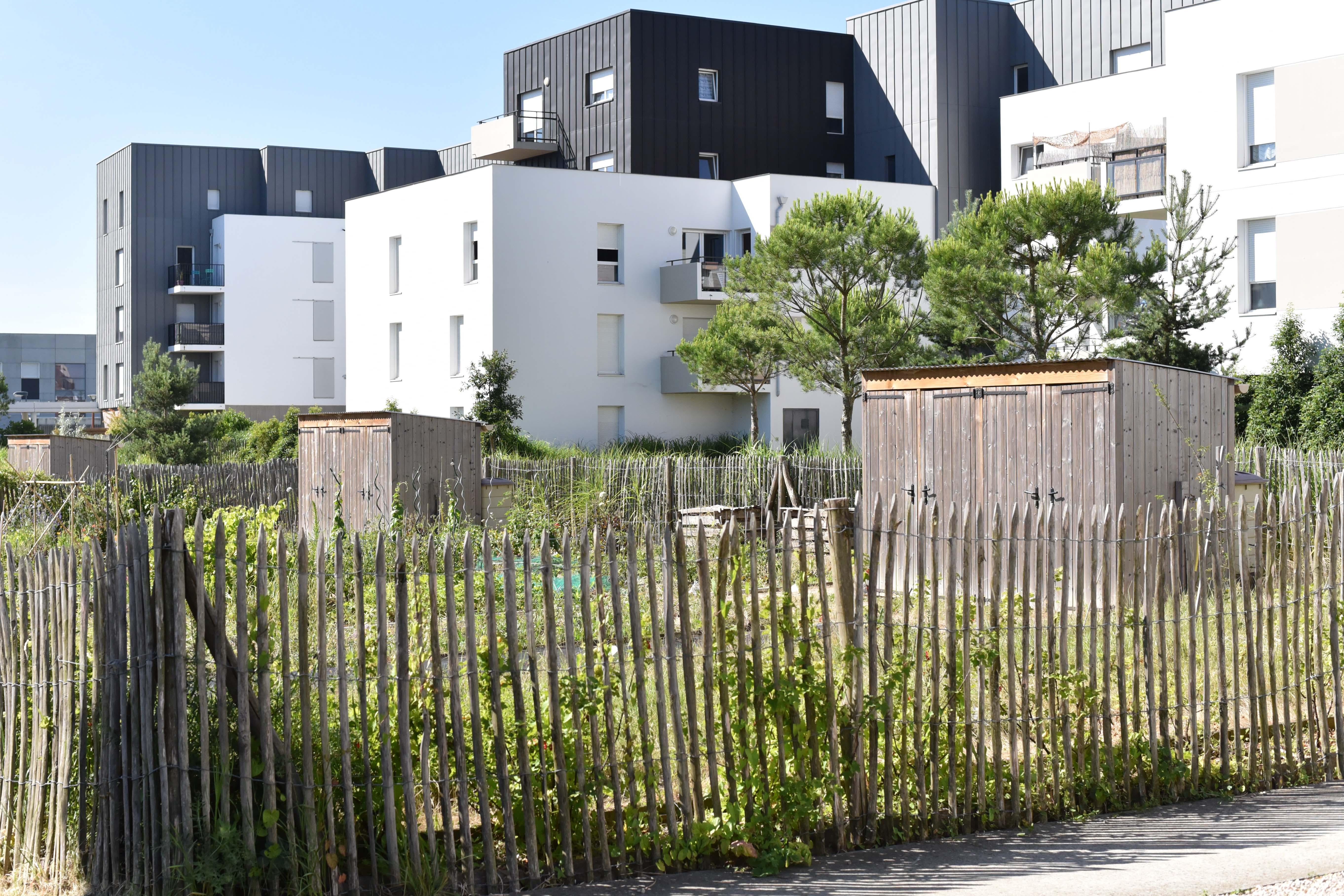 ZAC du Plateau de la Mayenne – Résidence Caravelle