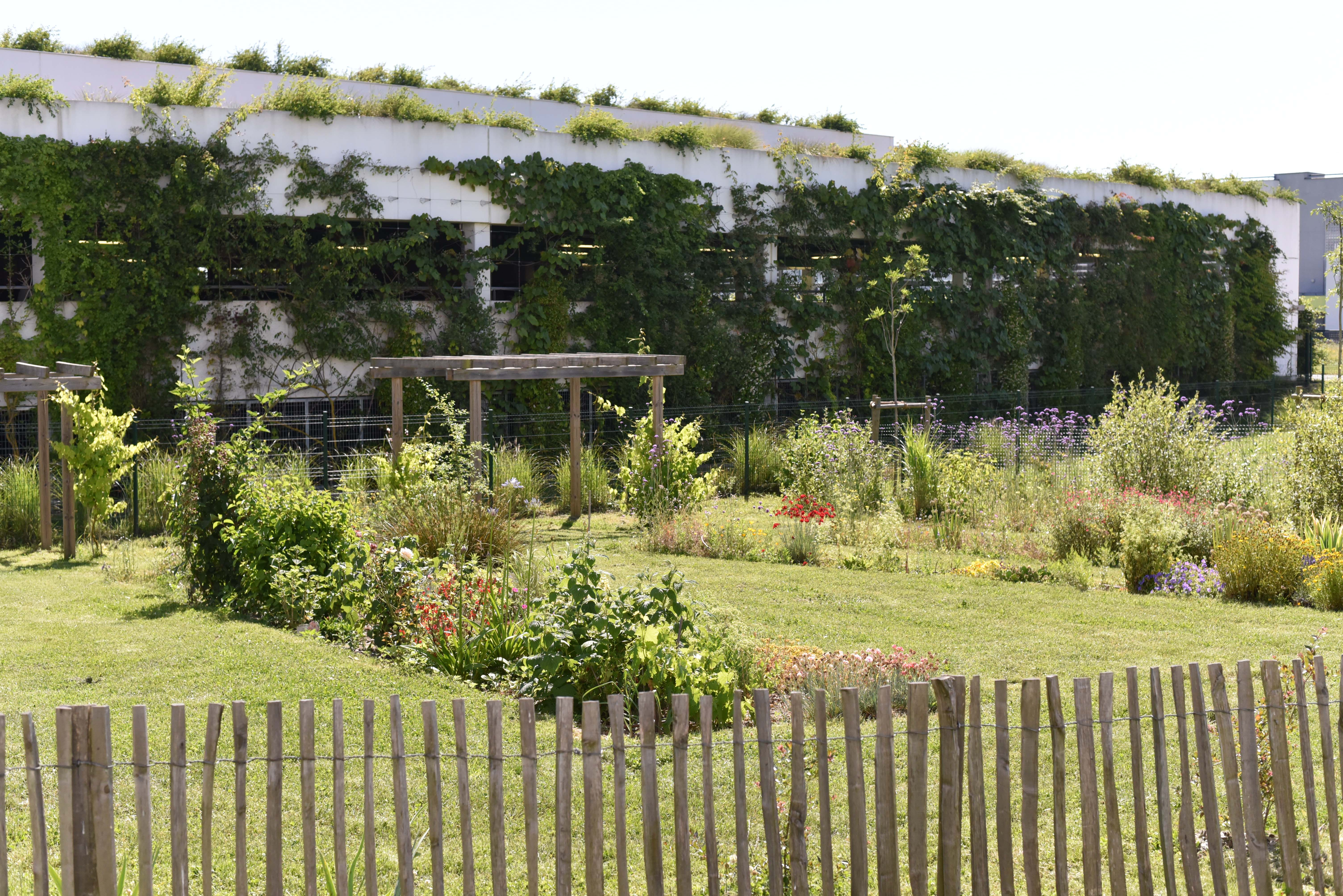 ZAC du Plateau de la Mayenne – Résidence les Vergers